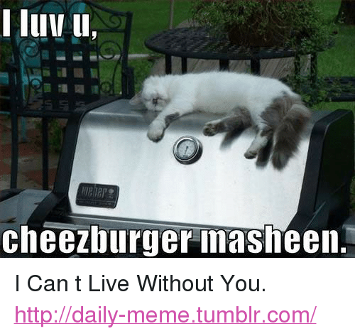 """cheezburger: lui u,  cheezburger masheen. <p>I Can t Live Without You.<br/><a href=""""http://daily-meme.tumblr.com""""><span style=""""color: #0000cd;""""><a href=""""http://daily-meme.tumblr.com/"""">http://daily-meme.tumblr.com/</a></span></a></p>"""