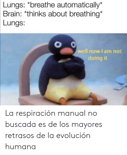 Brain, Humana, and Now: Lungs: *breathe automatically*  Brain: *thinks about breathing*  Lungs:  well now I am not  doing La respiración manual no buscada es de los mayores retrasos de la evolución humana