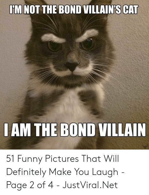 Definitely, Funny, and Pictures: M NOT THE BOND VILLAIN'S CAT  IAM THE BOND VILLAIN 51 Funny Pictures That Will Definitely Make You Laugh - Page 2 of 4 - JustViral.Net