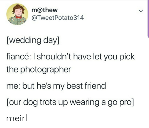 Best Friend, Best, and Fiance: m@thew  @TweetPotato314  [wedding day]  fiancé: I shouldn't have let you pick  the photographer  me: but he's my best friend  [our dog trots up wearing a go pro] meirl