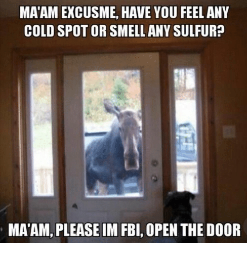 sulfur: MA'AM EXCUSME, HAVE YOU FEEL ANY  COLD SPOT OR SMELL ANY SULFUR?  MA'AM, PLEASEIM FBI, OPEN THE DOOR