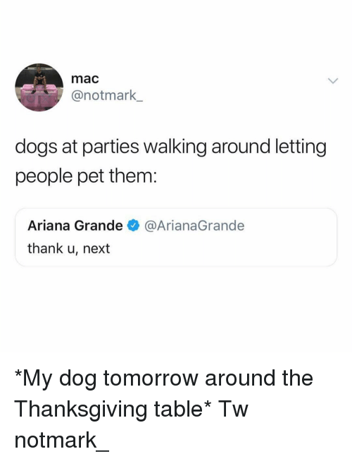 Ariana Grande, Dogs, and Memes: mac  @notmark  dogs at parties walking around letting  people pet them:  Ariana Grande@ArianaGrande  thank u, next *My dog tomorrow around the Thanksgiving table* Tw notmark_