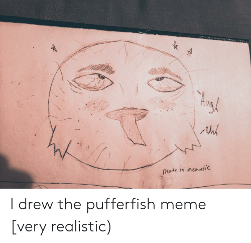 Meme, Reddit, and Made: Made in memetic I drew the pufferfish meme [very realistic)