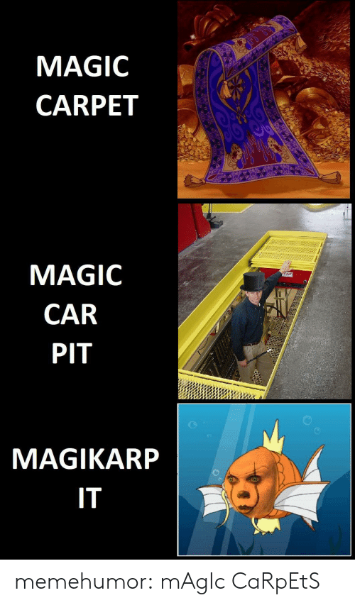 magikarp: MAGIC  CARPET  MAGIC  CAR  PIT  MAGIKARP  IT memehumor:  mAgIc CaRpEtS
