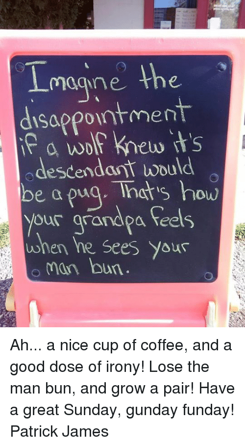 Irony: magne the  disappointment  a wolf knew its  odescendant would  be a puq. Tnats how  your arandpa feels  when he Sees Yous  man bun Ah... a nice cup of coffee, and a good dose of irony! Lose the man bun, and grow a pair! Have a great Sunday, gunday funday! Patrick James