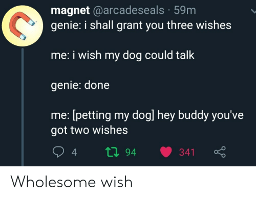 magnet: magnet @arcadeseals 59m  genie: i shall grant you three wishes  me: i wish my dog could talk  genie: done  me: [petting my dogl hey buddy you've  got two wishes  ti94  341 Wholesome wish