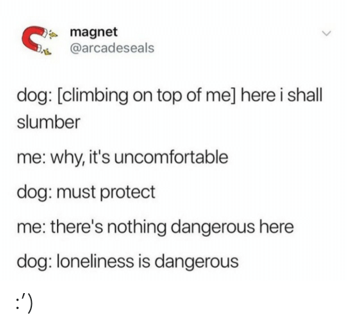 On Top: * magnet  @arcadeseals  dog: [climbing on top of me] here i shall  slumber  me: why, it's uncomfortable  dog: must protect  me: there's nothing dangerous here  dog: loneliness is dangerous :')