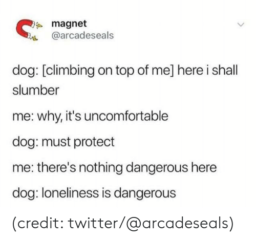 magnet: magnet  @arcadeseals  dog: [climbing on top of me] here i shall  slumber  why, it's uncomfortable  dog: must protect  there's nothing dangerous here  dog: loneliness is dangerous (credit: twitter/@arcadeseals)