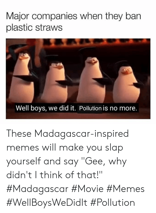 """Memes, Movie, and Boys: Major companies when they ban  plastic straws  Well boys, we did it. Pollution is no more. These Madagascar-inspired memes will make you slap yourself and say """"Gee, why didn't I think of that!"""" #Madagascar #Movie #Memes #WellBoysWeDidIt #Pollution"""