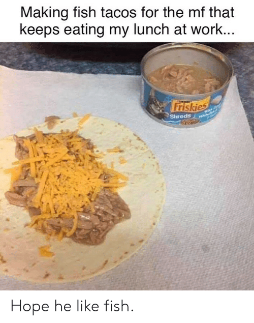Dank, Work, and Fish: Making fish tacos for the mf that  keeps eating my lunch at work...  Friskies  Shreds Hope he like fish.