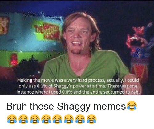 Ash, Bruh, and Memes: Making the movie was a very hard process, actually. I could  only use 0.1% ofShaggy's power at a time. There was one  instance where Iused 0.8% and the entire set turned to ash Bruh these Shaggy memes😂😂😂😂😂😂😂😂😂
