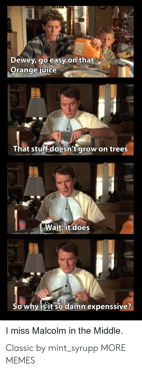 malcolm: MALL  Dewey, go easy on that  Orange juice  That stuff.doesn't grow  on trees  Wait, it does  So why isit so damn expenssive?  I miss Malcolm in the Middle Classic by mint_syrupp MORE MEMES