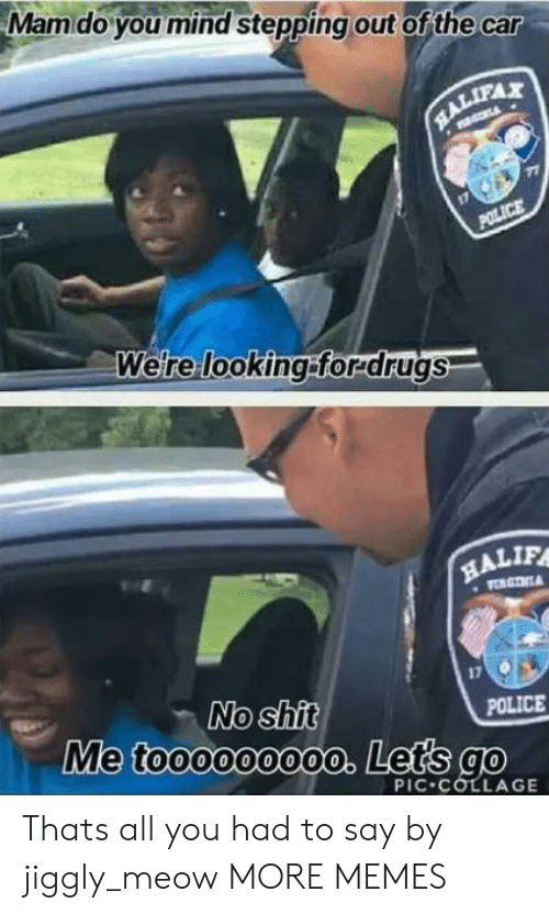 No Shit: Mamdo you mind stepping out of the car  RALIFAX  POLICE  Were looking:forrdrugs  HALIF  VORGTNA  No shit  Me toooooo00o. Lets go  POLICE  PIC COLLAGE Thats all you had to say by jiggly_meow MORE MEMES