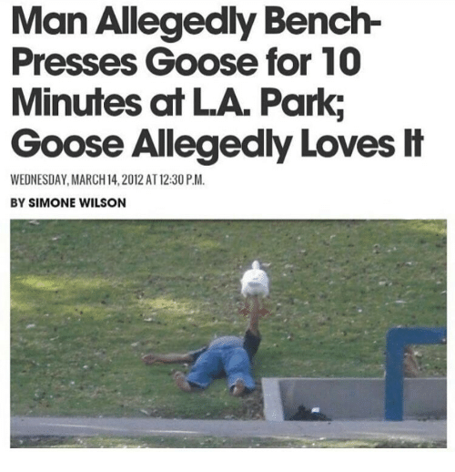 Wednesday, March 14, and Man: Man Allegedly Bench-  Presses Goose for 10  Minutes at LA. Park;  Goose Allegedly Loves H  WEDNESDAY, MARCH 14,2012 AT 12:30 P.M.  BY SIMONE WILSON