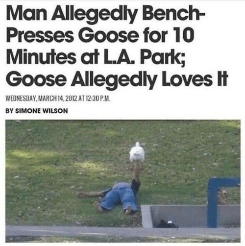 Dank, Wednesday, and March 14: Man Allegedly Bench-  Presses Goose for 10  Minutes at LA. Park,  Goose Allegedly Loves It  WEDNESDAY, MARCH 14,2012 AT 12:30 P.M.  BY SIMONE WILSON