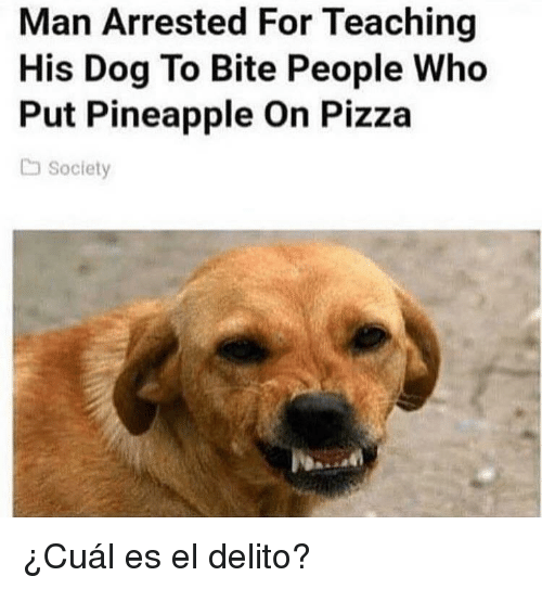 Pizza, Pineapple, and Teaching: Man Arrested For Teaching  His Dog To Bite People Who  Put Pineapple On Pizza  Society <p>¿Cuál es el delito?</p>