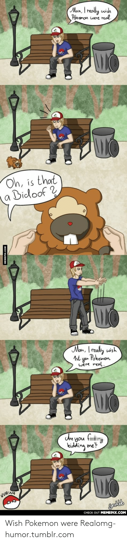 bidoof: Man, I really wish  Pokemon were real.  Oh, is that  Bidoof ?  Man, I really wish  Pokemon  1st  gen  were real.  Are you fi  kidding me?  KURWA  CHECK OUT MEMEPIX.COM  MEMEPIX.COM Wish Pokemon were Realomg-humor.tumblr.com