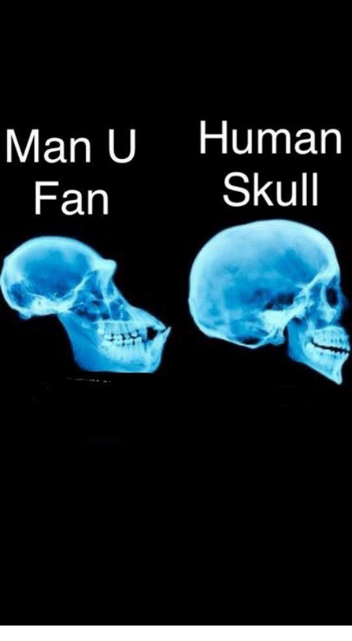 Memes, Skull, and 🤖: Man U Human  Fan  Skull
