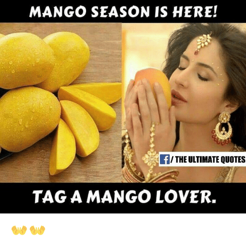 Mango Season Is Here The Ultimate Quotes Tag A Mango Lover