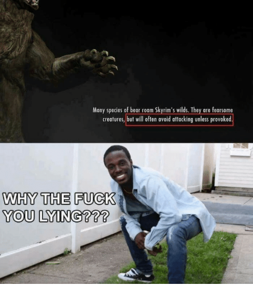 You Lying: Many species of bear roam Skyrim's wilds. They are fearsome  creatures, but will often avoid attacking unless provoked  WHY THE FUCK  YOU LYING???