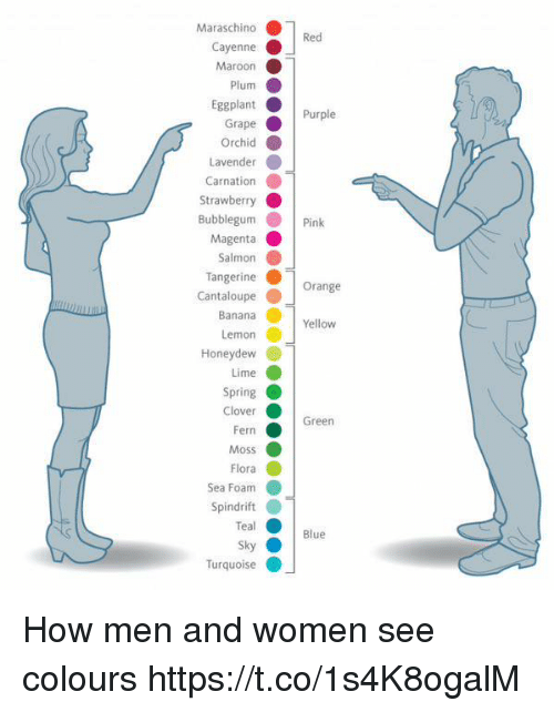 pinkly: Maraschino  rapePurple  Strawberry  Pink  Orange  Yellow  Honeydew  Green  Blue  Turquoise How men and women see colours https://t.co/1s4K8ogalM