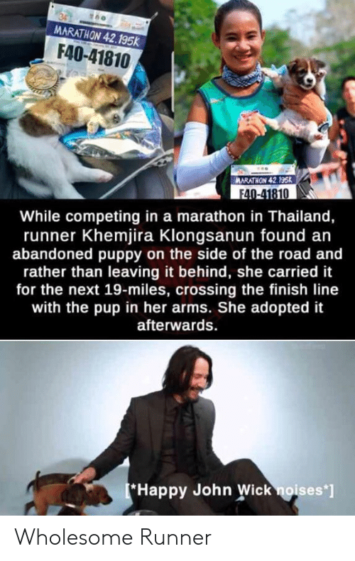 """Finish Line, John Wick, and Happy: MARATHON 42.195k  F40-41810  MARATHON 42.195K  F40-41810  While competing in a marathon in Thailand,  runner Khemjira Klongsanun found an  abandoned puppy on the side of the road and  rather than leaving it behind, she carried it  for the next 19-miles, crossing the finish line  with the pup in her arms. She adopted it  afterwards  Happy John Wick noises""""] Wholesome Runner"""