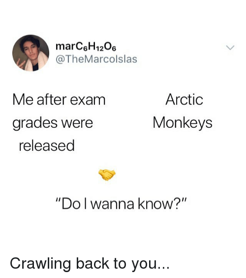 """Memes, Wanna Know, and Back: marC6H1206  @TheMarcolslas  Arctic  Monkeys  Me after exam  grades Were  released  """"Do l wanna know?"""" Crawling back to you..."""
