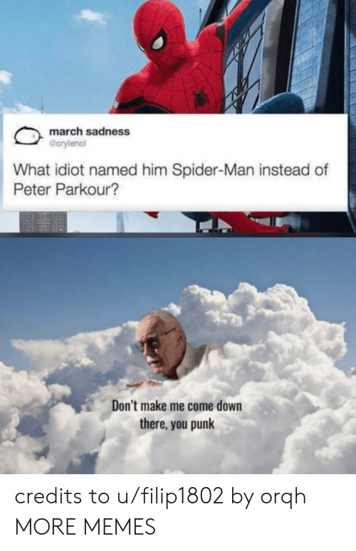 Dank, Memes, and Spider: march sadness  @crylenol  What idiot named him Spider-Man instead of  Peter Parkour?  Don't make me come down  there, you punk credits to u/filip1802 by orqh MORE MEMES