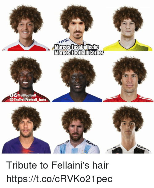 Marcos: Marcos Fussbalecke  Marcos  FootbaliCorner  TrollFootball  The Tr  ollFootball Insta Tribute to Fellaini's hair https://t.co/cRVKo21pec