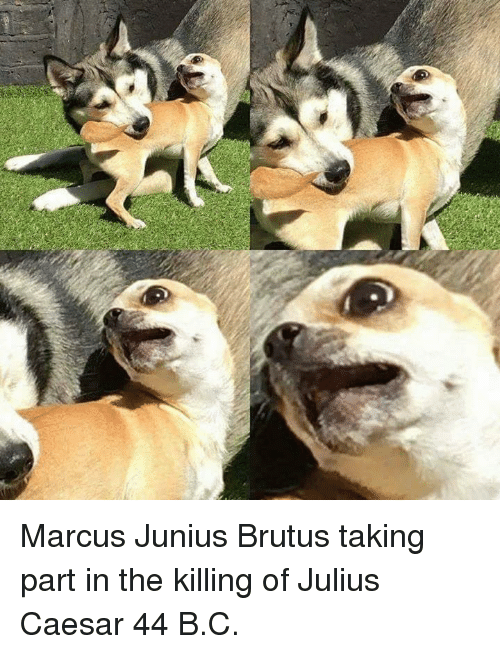 Julius Caesar: Marcus Junius Brutus taking part in the killing of Julius Caesar 44 B.C.