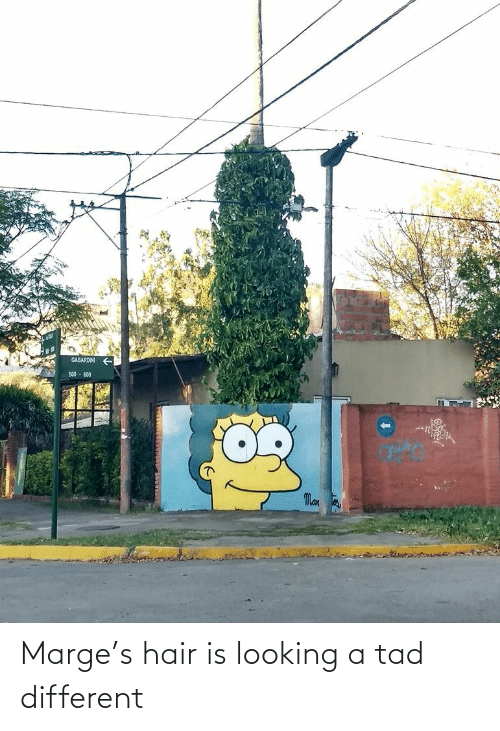 different: Marge's hair is looking a tad different