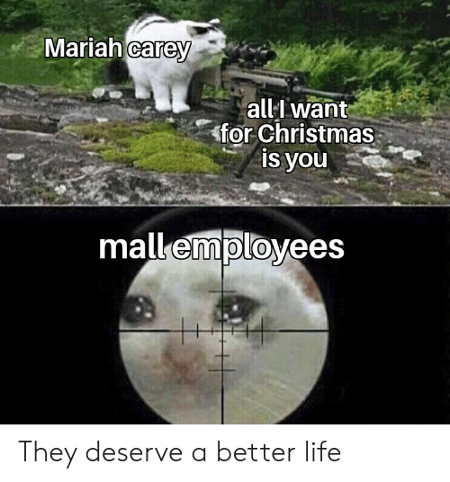 Christmas, Life, and Mariah Carey: Mariah carey  all want  for Christmas  is you  mall employees They deserve a better life