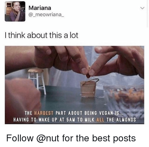 Mariana: Mariana  @_meowriana  I think about this a lot  THE HARDEST PART ABOUT BEING VEGAN IS  HAVING TO WAKE UP AT 5AM TO MILK ALL THE ALMONDS Follow @nut for the best posts