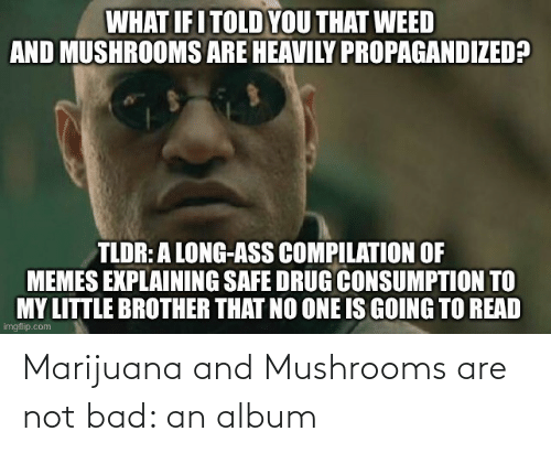Marijuana: Marijuana and Mushrooms are not bad: an album