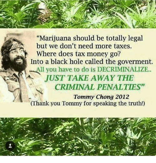"""Tommy Chong: """"Marijuana should be totally legal  but we don't need more taxes.  Where does tax money go?  Into a black hole called the goverment.  All you have to do is JUST TAKE AWAY THE  CRIMINAL PENALTIES""""  Tommy Chong 2012  (Thank you Tommy for speaking the truth!)"""