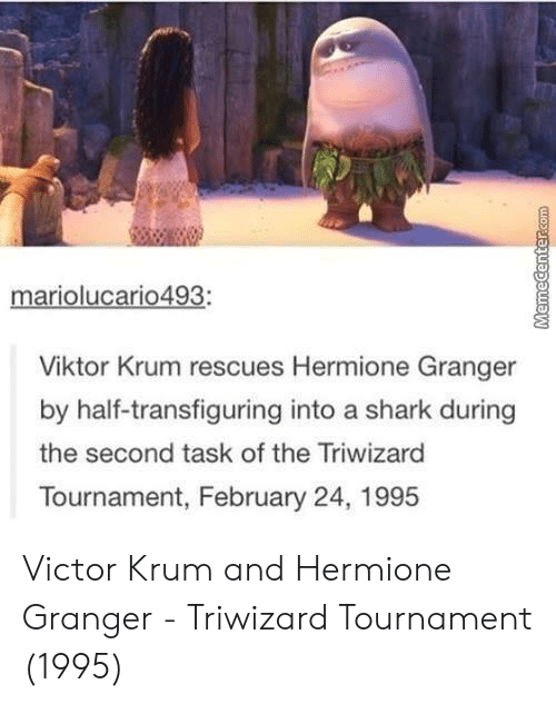 Hermione, Shark, and Viktor: mariolucario493:  Viktor Krum rescues Hermione Granger  by half-transfiguring into a shark during  the second task of the Triwizard  Tournament, February 24, 1995 Victor Krum and Hermione Granger - Triwizard Tournament (1995)