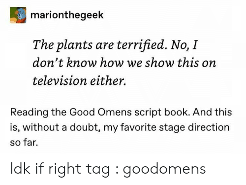 Book, Good, and Television: marionthegeek  The plants are terrified. No, I  don't know how we show this on  television either.  Reading the Good Omens script book. And this  is, without a doubt, my favorite stage direction  so far. Idk if right tag : goodomens