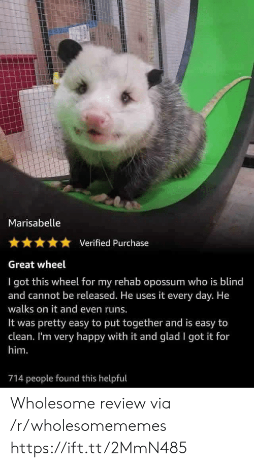 i got this: Marisabelle  Verified Purchase  Great wheel  I got this wheel for my rehab opossum who is blind  and cannot be released. He uses it every day. He  walks on it and even runs.  pretty easy to put together and is easy to  clean. I'm very happy with it and glad I got it for  It was  him.  714 people found this helpful Wholesome review via /r/wholesomememes https://ift.tt/2MmN485