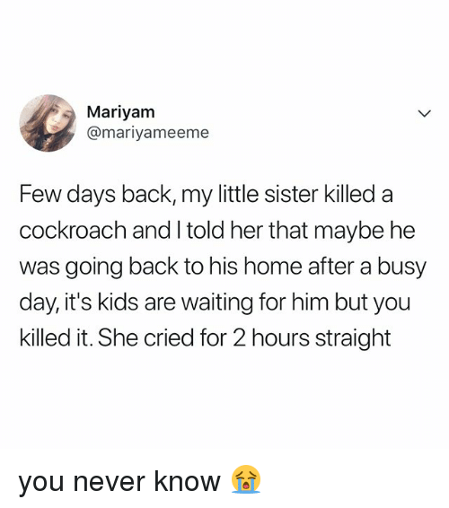 Busy Day: Mariyam  @mariyameeme  Few days back, my little sister killed a  cockroach and I told her that maybe he  was going back to his home after a busy  day, it's kids are waiting for him but you  killed it. She cried for 2 hours straight you never know 😭