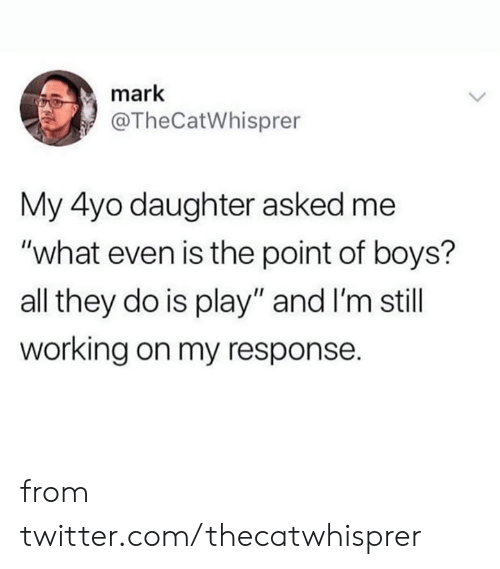 """Dank, Twitter, and Boys: mark  @TheCatWhisprer  My 4yo daughter asked me  """"what even is the point of boys?  all they do is play"""" and I'm still  working on my response. from twitter.com/thecatwhisprer"""