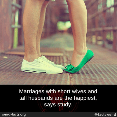 Facts, Memes, and Weird: Marriages with short wives and  tall husbands are the happiest,  says study.  weird-facts.org  @factsweird