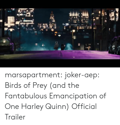 Joker, Target, and Tumblr: marsapartment:  joker-aep:  Birds of Prey (and the Fantabulous Emancipation of One Harley Quinn) Official Trailer