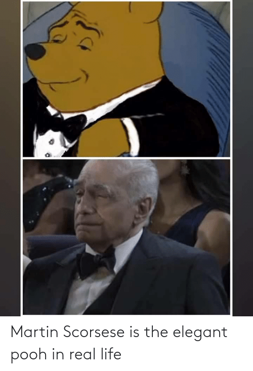pooh: Martin Scorsese is the elegant pooh in real life