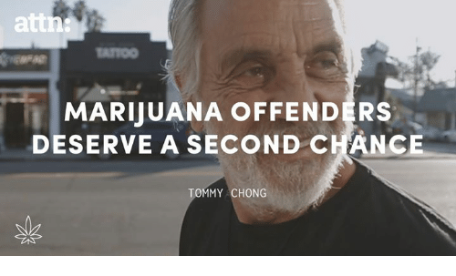Tommy Chong: MARUUANA OFFENDERS  DESERVE A SECOND CHANCE  TOMMY CHONG
