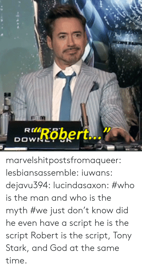 the script: marvelshitpostsfromaqueer:  lesbiansassemble:  iuwans:  dejavu394:  lucindasaxon:  #who is the man and who is the myth #we just don't know  did he even have a script   he is the script    Robert is the script, Tony Stark, and God at the same time.