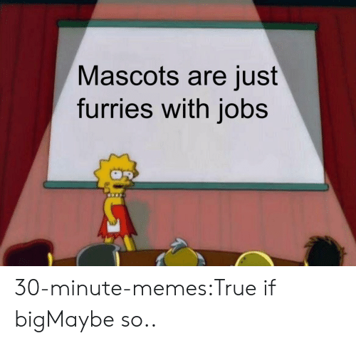 mascots: Mascots are just  furries with jobs 30-minute-memes:True if bigMaybe so..