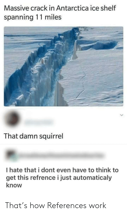Squirrel: Massive crack in Antarctica ice shelf  spanning 11 miles  That damn squirrel  I hate that i dont even have to think to  get this refrence i just automaticaly  know That's how References work