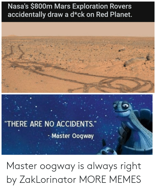 master: Master oogway is always right by ZakLorinator MORE MEMES