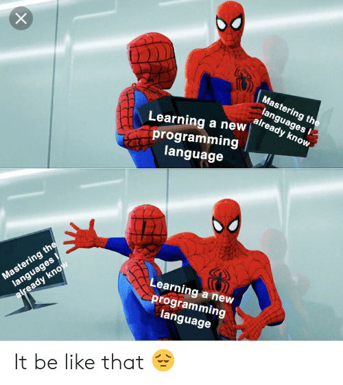 programming language: Mastering the  languages  already know  Learning a new  programming  language  Mastering the  languages  Learning a new  programming  language  already know It be like that 😔