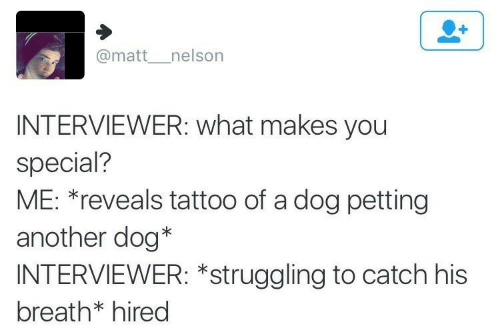Makes: @matt__nelson  INTERVIEWER: what makes you  special?  ME: *reveals tattoo of a dog petting  another dog*  INTERVIEWER: *struggling to catch his  breath* hired
